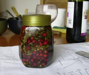 hawthorn tincture-brewing