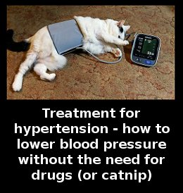 treatment for hypertension