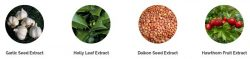 What is Alistrol - ingredients