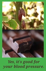 chocolate for lower blood pressure